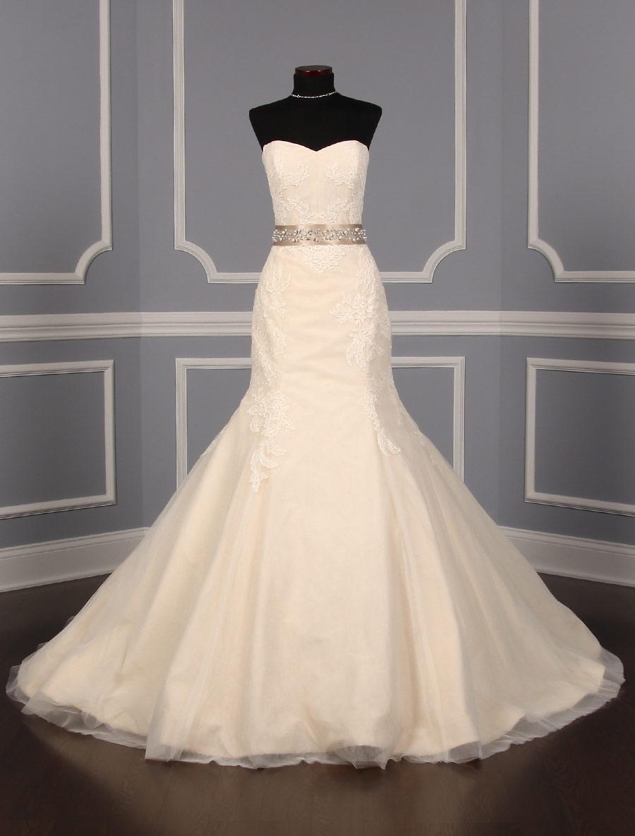 Champagne embellished bridal sash on sale your dream dress for Wedding sashes for dresses